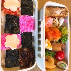 「みんなのお弁当」/みんなのお弁当 高1🌼女子ドカ弁🍱  ピンク的オセロ