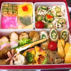 「みんなのお弁当」/みんなのお弁当 高1🌼女子ドカ弁🍱  モザイク押し寿司……