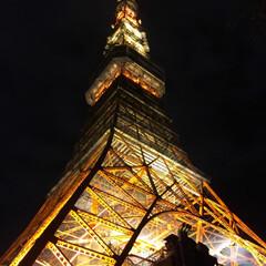 おすすめスポット/関東/夜景/冬/東京タワー/イルミネーション キレイでした💕  疲れたときは夜景! 落…(2枚目)