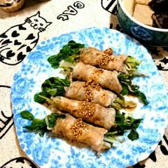 おうちご飯/クラシル/夕べのおかず/フォロー大歓迎/節約 豆苗とモヤシを豚肉でクルクル、レンジで5…