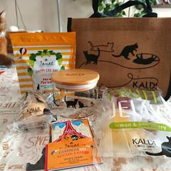 猫の日バッグ/カルディ/マリリン/2月22日/猫の日/暮らしを楽しむ カルディの猫の日バッグ ゲットしました❣…(1枚目)