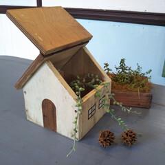 DIY/DIYエル・マルシェ/マルシェ/朝市/フェス/カフェ/... かわいい木のお家。屋根がパカッと開いて小…