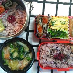 八宝菜/卵焼き/ちくわの磯辺揚げ/肉巻き/お弁当/雑穀米/... 今日のお弁当(*˘︶˘*).。.:*♡ …