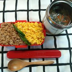 お弁当/野菜スープ/鶏そぼろ弁当/わたしのごはん/おうちごはんクラブ/グルメ/... 今日のお弁当は 鶏そぼろと、野菜スープで…(1枚目)