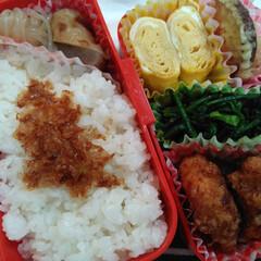 おかか/さつま芋の天ぷら/卵焼き/お弁当/春菊のお浸し/唐揚げ/... 今日は唐揚げ弁当でした😊  *鶏もも肉を…
