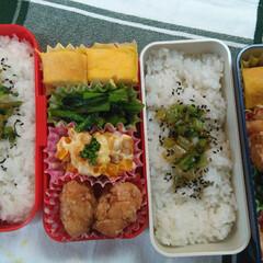 お弁当/大根の葉の炒め煮/ウィンナー/たまご焼き/かぼちゃサラダ/唐揚げ/... 今日のお弁当😊 小松菜…オイスターソース…
