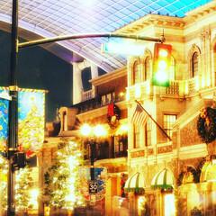 イルミネーション/夜景/クリスマス/冬/風景/景色/... 冬の始まりはクリスマスシーズンの開幕から…