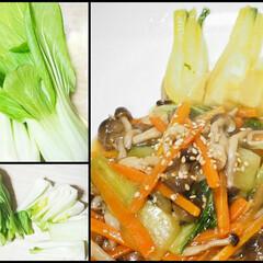 ブナしめじ/ニンジン/人参/塩麹/手作り/自炊/... 青梗菜の塩麹炒め。 青梗菜とブナしめじな…