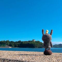 羊毛フェルト/ウサギ/旅/空/海 先日行った伯方島の海です。 空も海も青く…