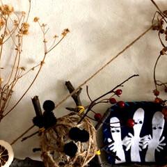 ドライフラワー/木ノ実/レース糸/毛糸/ポストカード/手芸/... 娘達からポストカードのプレゼント🎁を貰っ…(5枚目)