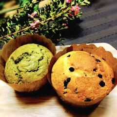 抹茶マフィン/チョコチップマフィン/至福のひととき/おやつタイム/LIMIAスイーツ愛好会/ダイソー/... 急にマフィンが食べたくなり、朝から作って…
