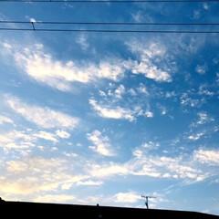 朝/雲/空/風景 おはようございます☀ 今朝6時20分‼️…(3枚目)
