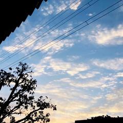 朝/雲/空/風景 おはようございます☀ 今朝6時20分‼️…(2枚目)