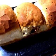 お弁当/くるみレーズンパン/ごまパン/手ごねパン/パン/ハンドメイド/... サンドイッチを作りたかったので、パンを焼…