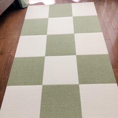 サンコー おくだけ吸着 ペット用床保護マット グリーン KM-52 60×120cm 約4mm厚 | サンコー(トイレ用マット)を使ったクチコミ「モニターキャンペーンに当選しました。  …」