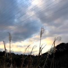夕焼け雲/雲/ウォーキング/おでかけ/風景/おでかけワンショット 本日のウォーキング! 田舎の風景👍 綺麗…(3枚目)