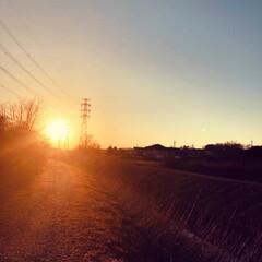 風景/夕陽/夕日/散歩/フォロー大歓迎/おでかけ/... 散歩に行った時に撮影した写真です。  夕…