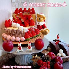 切り株ケーキ/【PR】LIMIAcamp/クリスマス2019/リミアの冬暮らし/ハンドメイド/無印良品/... クリスマスケーキをつくりました⁽⁽٩(๑…