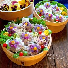 くるくる巻き巻き同盟/せいろ蒸し/うちの定番料理/うちで食べよう/家族時間/おうち時間/... お庭にパンジーが暑い中、今日も元気に 咲…