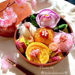 手作りコロッケ/桜/お弁当の記録/花見弁当/アート弁当/OBENTO/... おばあちゃんにお土産に手作り弁当作りまし…