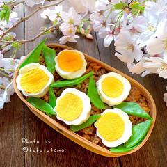 曲げわっぱ弁当/花ゆで卵/キーマカレー丼/キーマカレー/時短調理/時短弁当/... お花見🌸したいですねーって思ってたらご近…