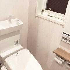 壁紙/トイレ/住まい 我が家は、ほとんどの部分をペット用壁紙に…