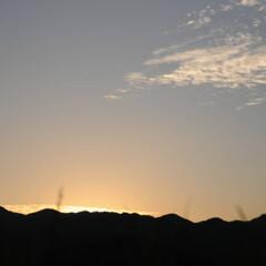 フォロー大歓迎/にゃんこ同好会/夕焼け/ねこのきもち/ねこ/散歩 スリスリしてたら日が暮れちゃったニャー🙀…(6枚目)