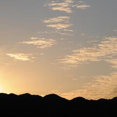 フォロー大歓迎/にゃんこ同好会/ねこのきもち/ねこ/空/夕暮れ/... もっと散歩したいニャー😿 日が暮れるの早…(3枚目)