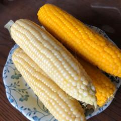 おでかけ 母と二人野菜の産直店へ  トウモロコシ2…(2枚目)