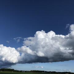 くも/空 久々の青空‼️  モクモクの雲