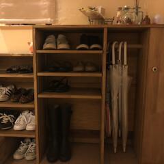 収納/おしゃれ/靴の収納/DIY 旦那さんがDIYした靴箱👞 靴の高さに応…