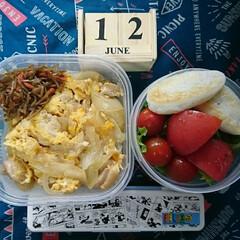 親子丼/サラダ/タッパー弁当/高校男子弁当 おはようございます🤗  今日はだいぶ手抜…