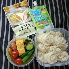夏休み終了/きゅうり/おくら/ミニトマト/自家製野菜/素麺/... おはようございます🙋  始まりました!🍱…