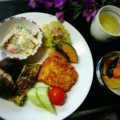 夕食/フード/グルメ マカロニサラダ キャベツのおひたし カボ…