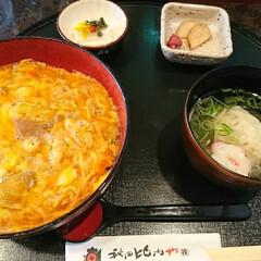 親子丼/グルメ/フード/おでかけ