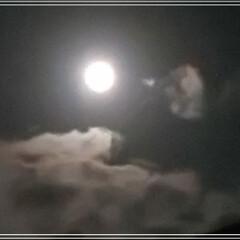 「 🌕️お月様~🎶  見れた~💕🤩」(1枚目)