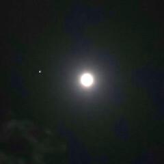 満月/十五夜  月🌕️の左側は火星です💕  綺麗に光っ…