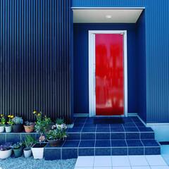 フォロー大歓迎/風景/住まい/建築/ガルバリウム鋼板/赤いドア 青いガルバリウム鋼板の外壁と赤いドア 青…