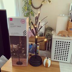 LEDツリー/ダイソー/300円商品 ダイソーのLED LIGHT TREE。…(3枚目)