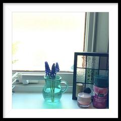 庭の花/フラワーベース/洗面所/ムスカリ 毎年、お庭に咲くムスカリを洗面所に飾りま…