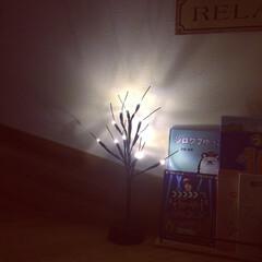 LEDツリー/ダイソー/300円商品 ダイソーのLED LIGHT TREE。…(1枚目)
