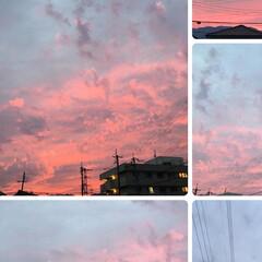 空/夕日 【🌆9/22は、燃えるような夕焼けでした…(3枚目)