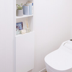 Mタイプ/トイレ収納ボックス/観葉植物/本/香り/芳香剤/... トイレに置きたい小物やストック類をすっき…