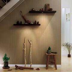 nankaiplywood/南海プライウッド/収納生活/収納/建材/内装材/... . 階段下のデッドスペースになっている壁…