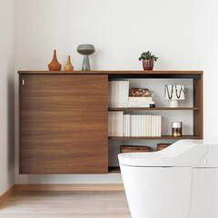 nankaiplywood/南海プライウッド/収納生活/収納/建材/内装材/... トイレ内の日用品をまとめて収納できるスリ…