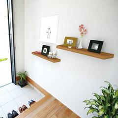 nankaiplywood/南海プライウッド/収納生活/収納/建材/内装材/... 玄関ホール壁面にウェルカムギャラリーや小…