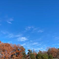 瑞穂の空/雲/空/いつかの空 いつかの空