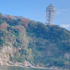 べんてん丸/江の島 江の島の海
