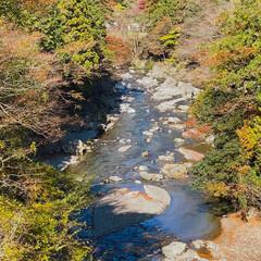 紅葉/瀬音の湯/秋川渓谷 秋川渓谷‼️自然て素晴らしい😄(1枚目)