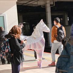 本物の馬じゃない/これはなんですか/駅のホーム 駅のホームですが、これはなんでしょうか?…